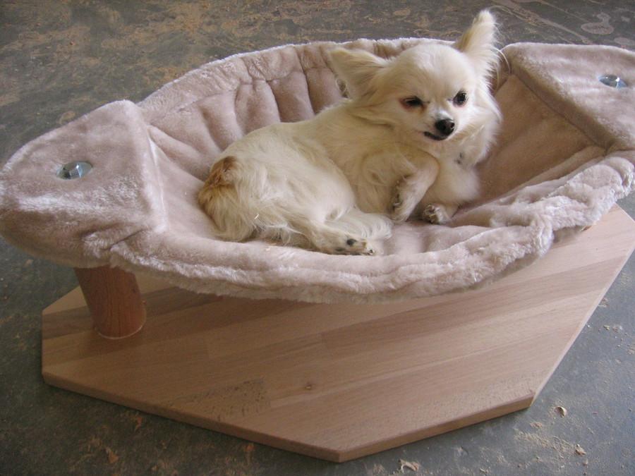 zooschreiner katzen. Black Bedroom Furniture Sets. Home Design Ideas